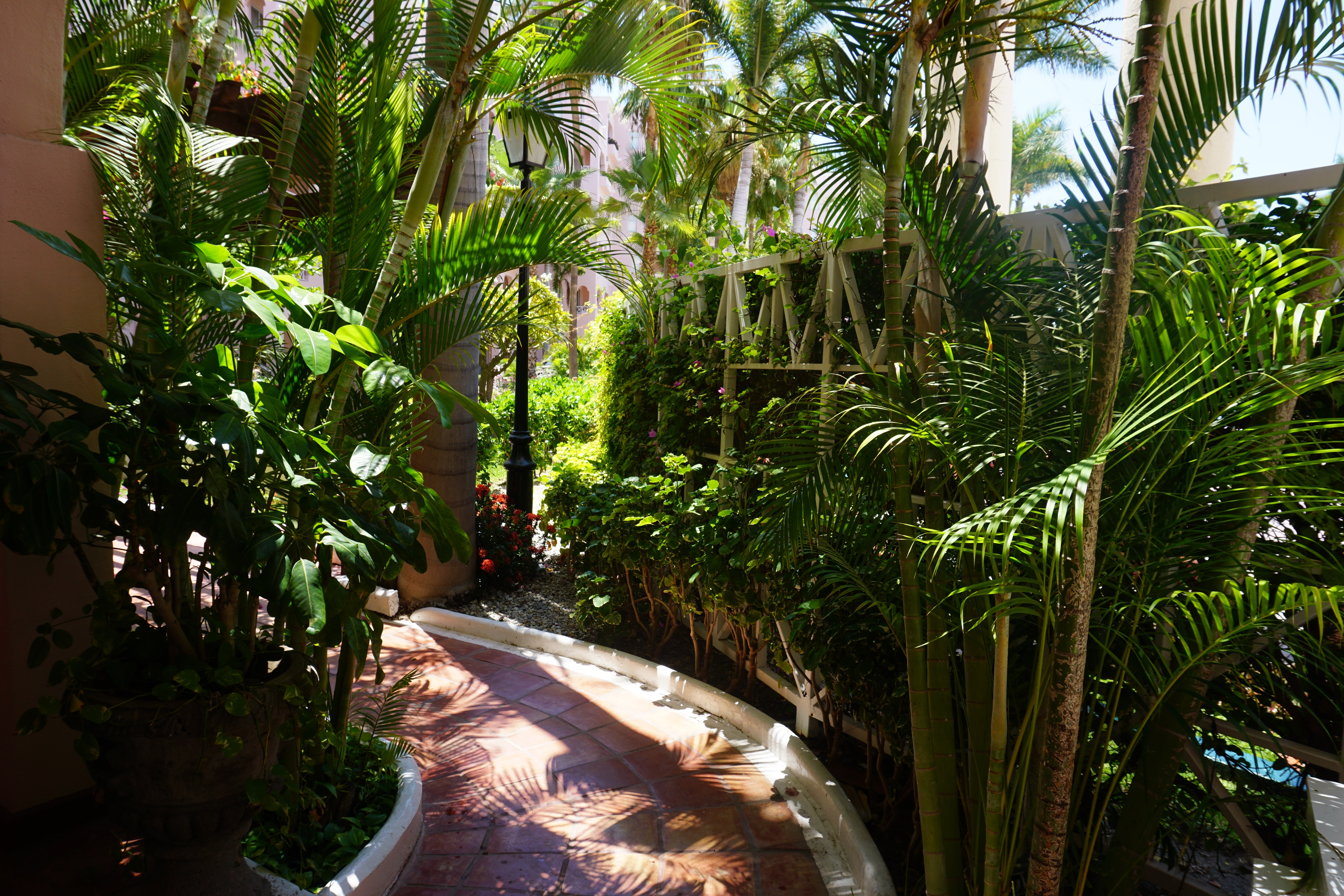 1033 - Path out to pool